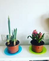My new friends!
